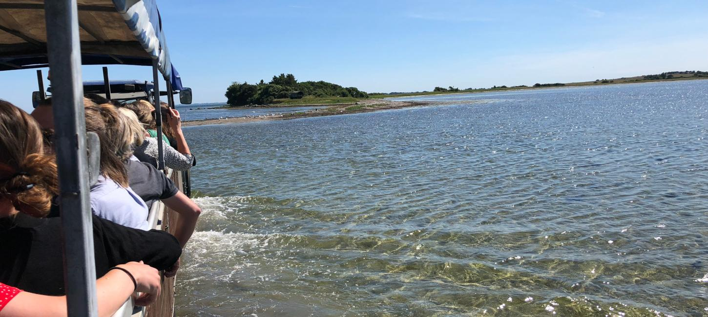 The Island of Svelmø | A private Island | The South Funen Archipelago